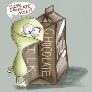 chocolate-milk1